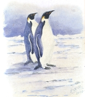 Emperor Penguins by EAW